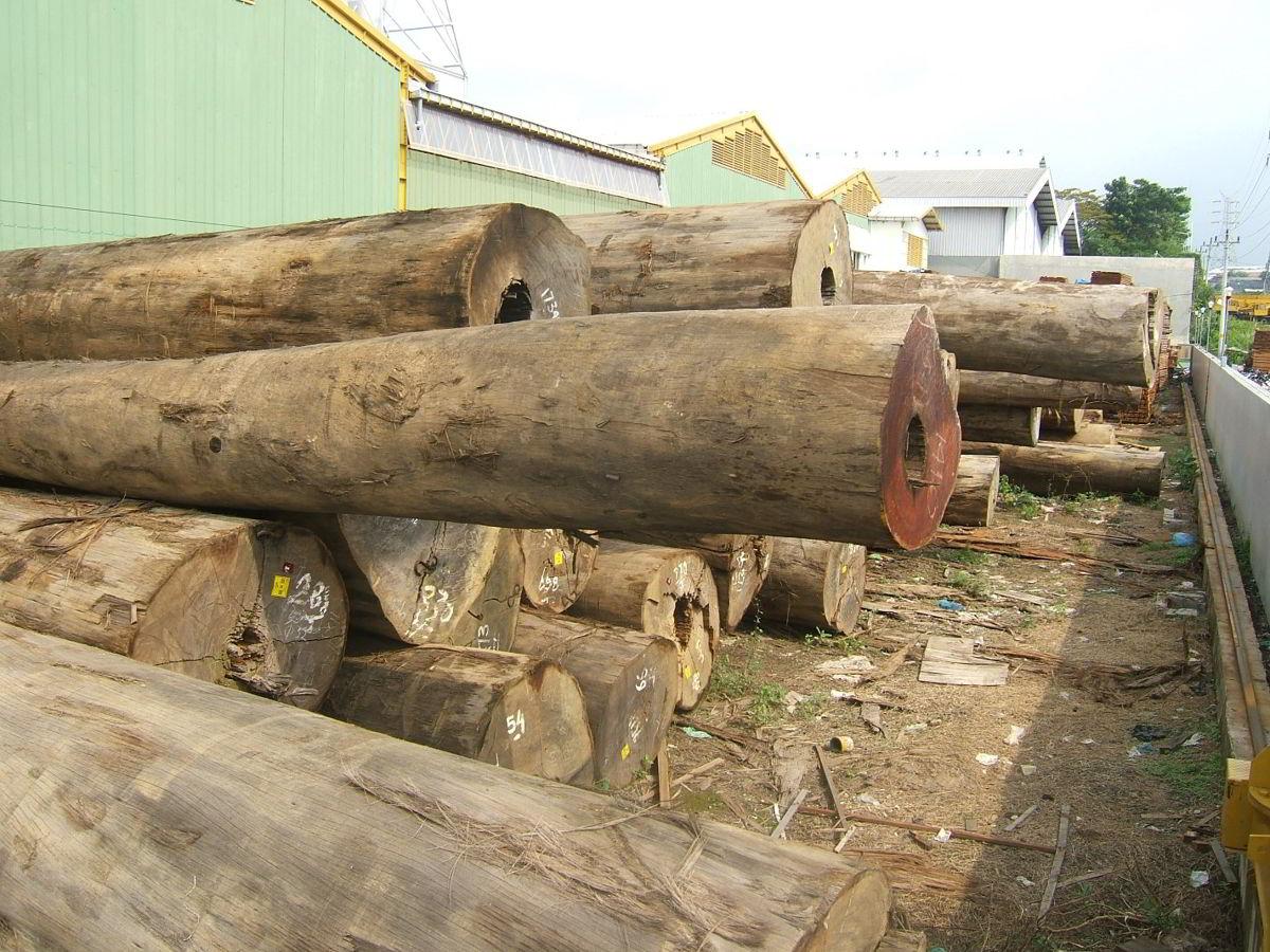 Perusahaan kayu 26