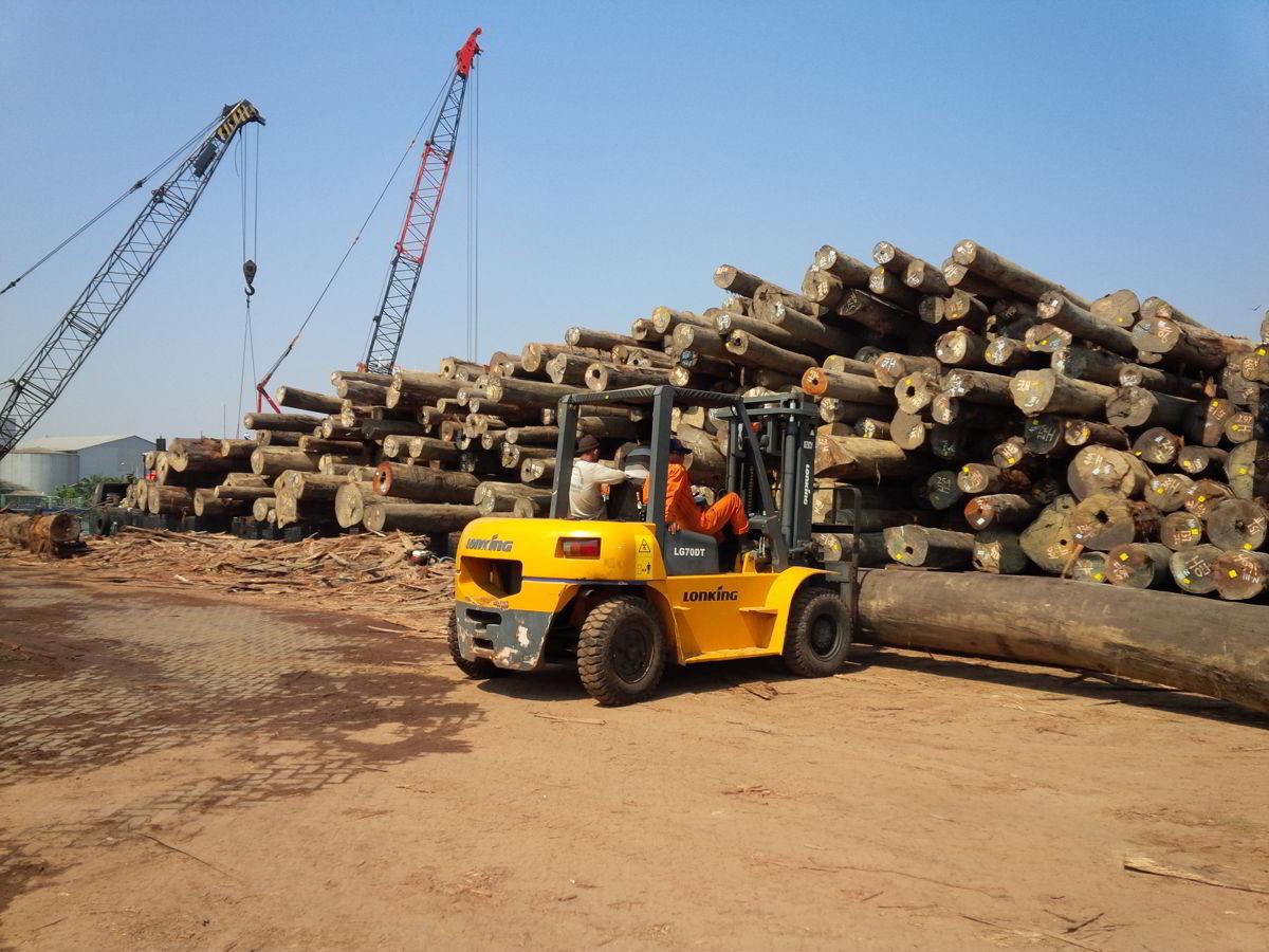 pemilihan kayu grand indo timber